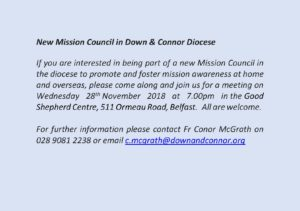 New Mission Council in Down and Connor Diocese @ Good Shepherd Centre | Northern Ireland | United Kingdom